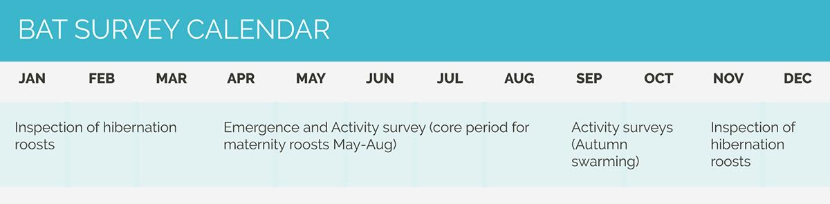 CSA calendar bat survey